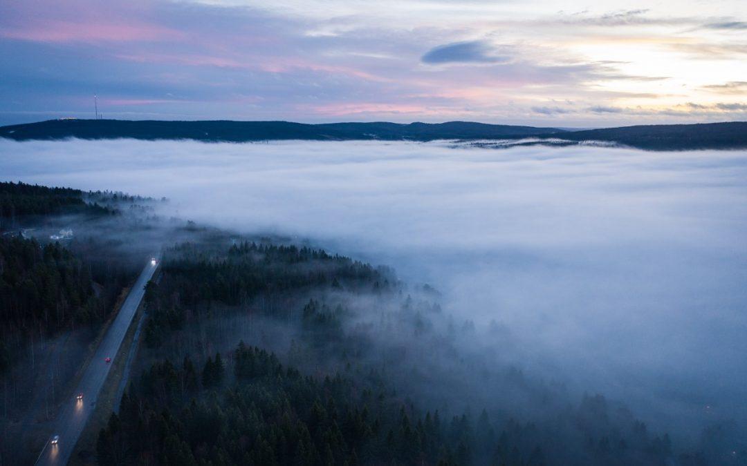 Ett dimmigt landskap